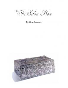 The Silver box cover